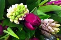 Bloemen 1