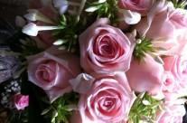 Bloemen 27