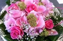 Bloemen 25